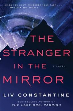 The stranger in the mirror : a novel by Constantine, Liv