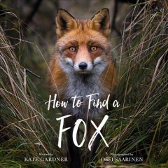 How to find a fox by Gardner, Kate  (Children's author)