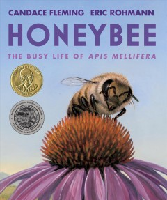 Honeybee  : the busy life of apis mellifera by Fleming, Candace