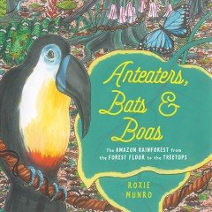 Anteaters, bats, & boas : the Amazon rainforest from the forest floor to the treetops by Munro, Roxie