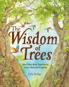 The wisdom of trees : how trees work together to form a natural kingdom by Judge, Lita