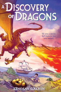 A Discovery of Dragons by Galvin, Lindsay