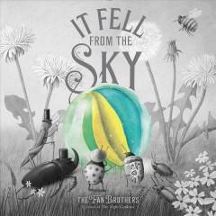 It fell from the sky by Fan, Terry