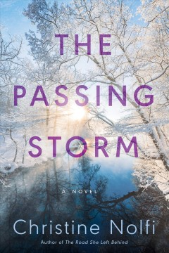 The Passing Storm by Nolfi, Christine