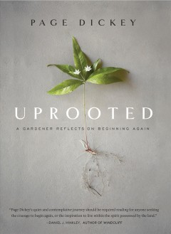 Uprooted : a gardener reflects on beginning again by Dickey, Page