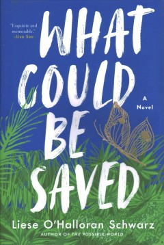 What could be saved : a novel by Schwarz, Liese O