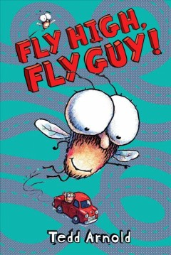 Fly high, fly guy! by Arnold, Tedd.