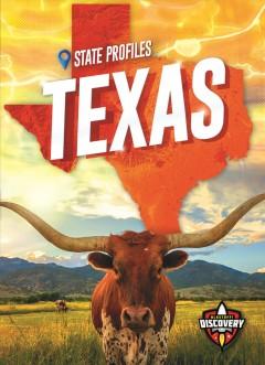 Texas by Perish, Patrick